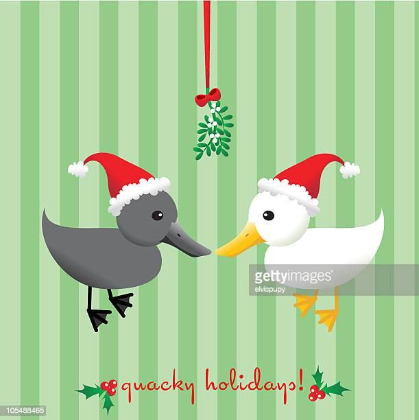 bildbanksillustrationer, clip art samt tecknat material och ikoner med quacky holidays! - duck