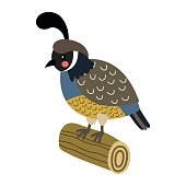 Quail perching on wood log animal cartoon character vector illustration.