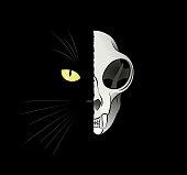 Quantum Cat - Dead-And-Alive