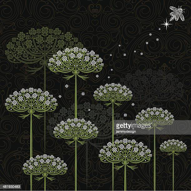 Queen Anne's Lace and Firefly