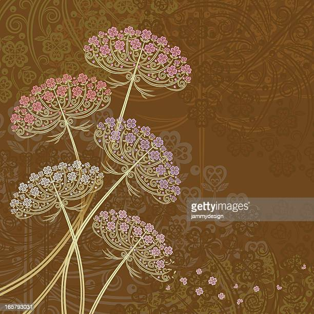 Daucus Carota Or Wild Carrot Or Bird's Nest Or Bishop's Lace.. Royalty Free  Cliparts, Vectors, And Stock Illustration. Image 35361420.