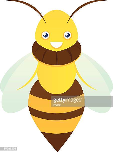queen bee - bumblebee stock illustrations, clip art, cartoons, & icons