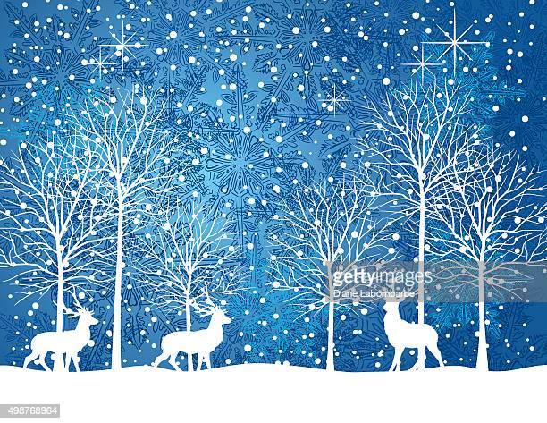 Paisible nuit d'hiver enneigé paysage avec arbres et de cerfs
