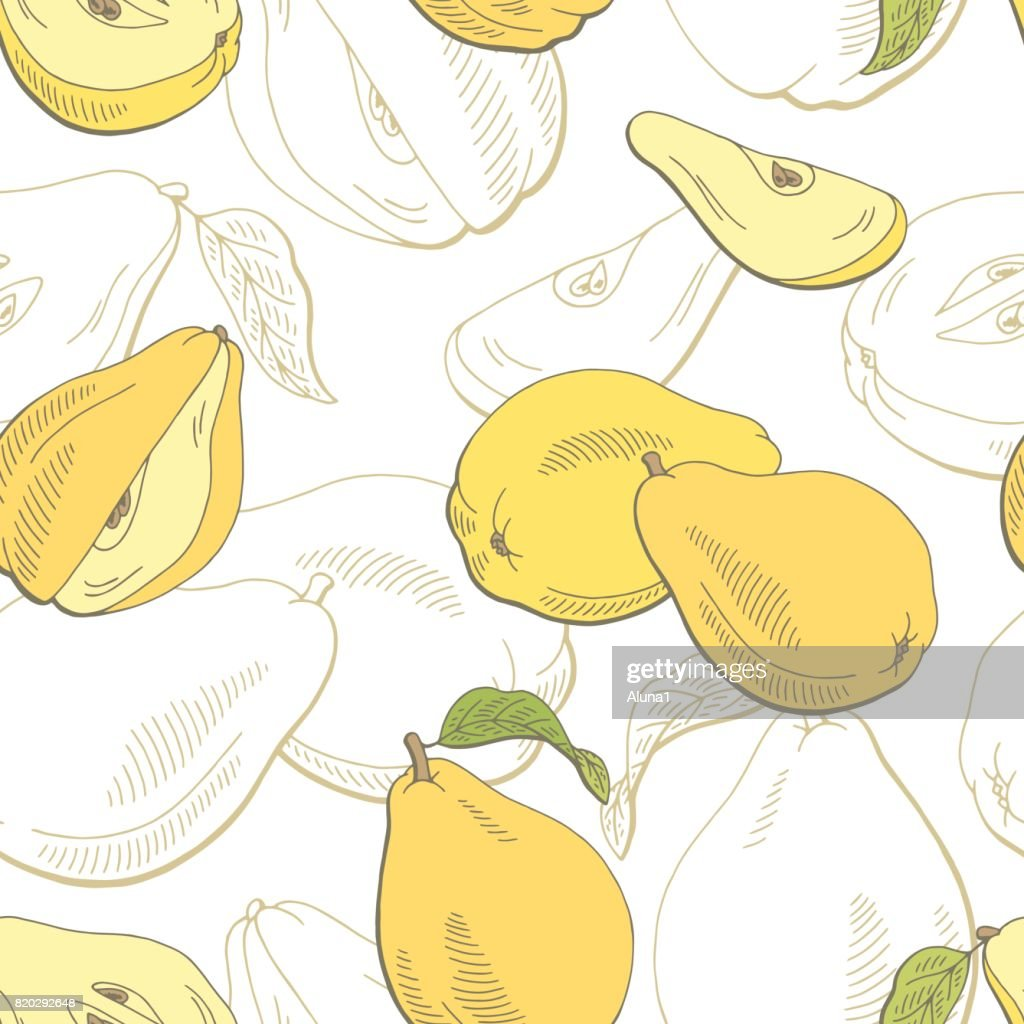 Quince fruit graphic color seamless pattern sketch illustration vector