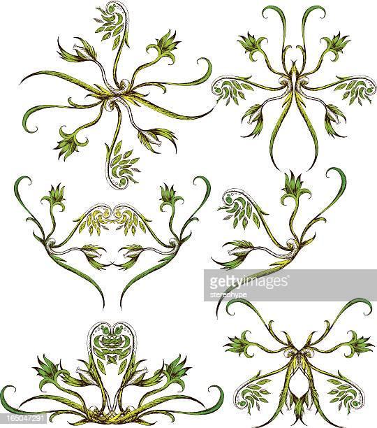 Extravagante Flor formas