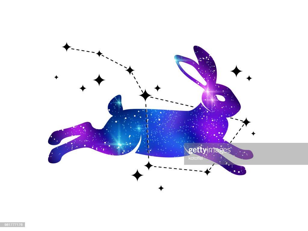 Rabbit and constellation of Ursa
