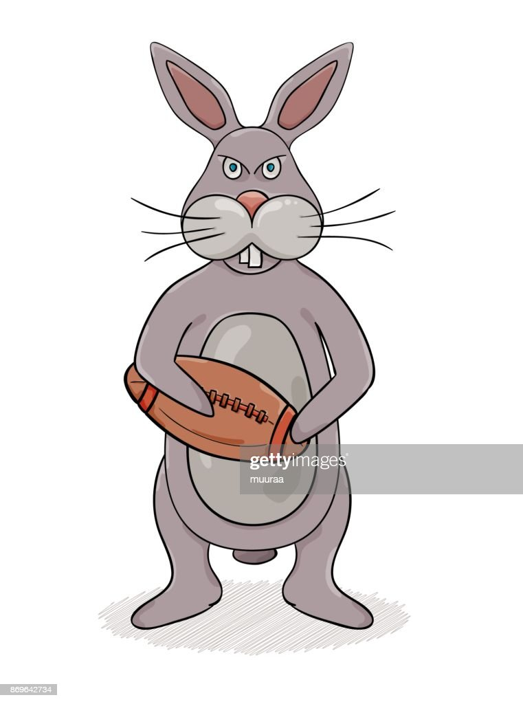 Rabbit and rugby ball
