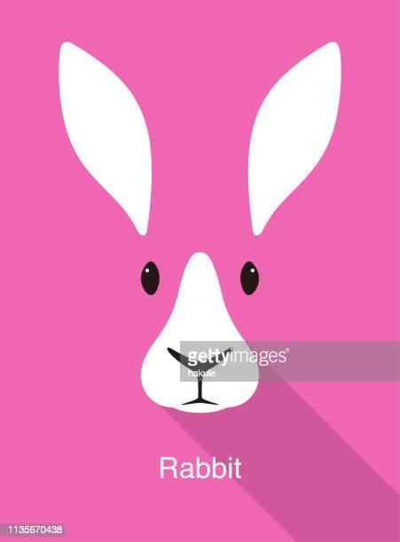 rabbit cartoon face, flat animal face icon vector - lagomorphs stock illustrations
