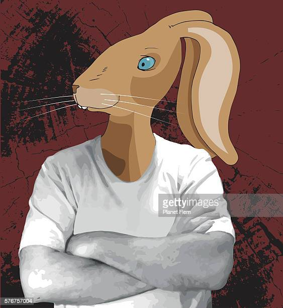 Rabbit in t-shirt
