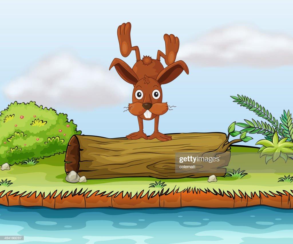 Kaninchen auf einem Baumstamm : Vektorgrafik