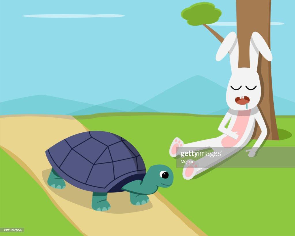 Rabbit sleep under tree while tortoise run on road