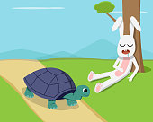 Rabbit sleep under tree while tortoise run on road