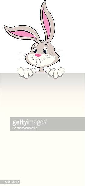 rabbit with banner