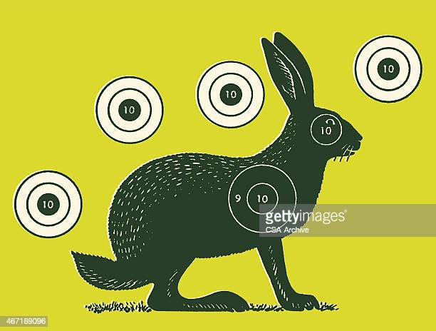Rabbit with Five Targets Around It
