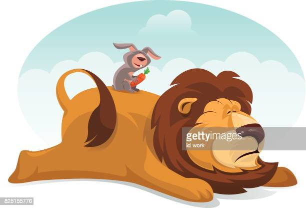 rabbit with sleepy lion