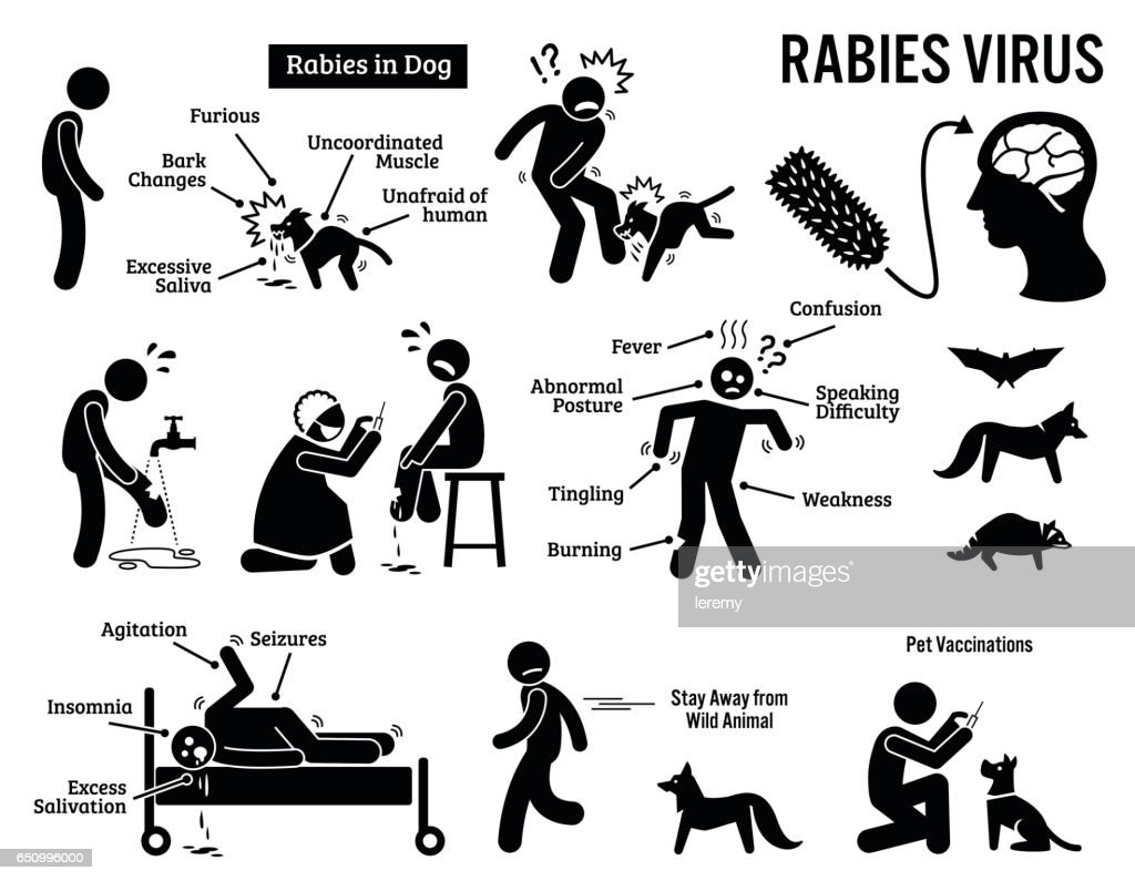 Rabies Virus in Human and Animal Stick Figure Pictogram Icons