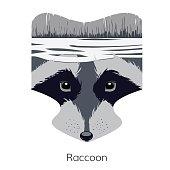 raccoon head icon
