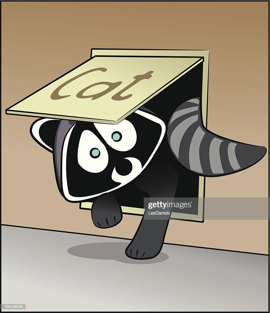 Raccoon in the Cat Flap!