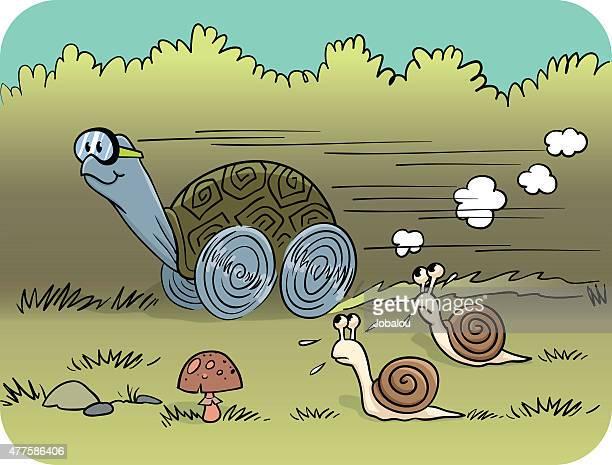 illustrations, cliparts, dessins animés et icônes de tortue de course - escargot