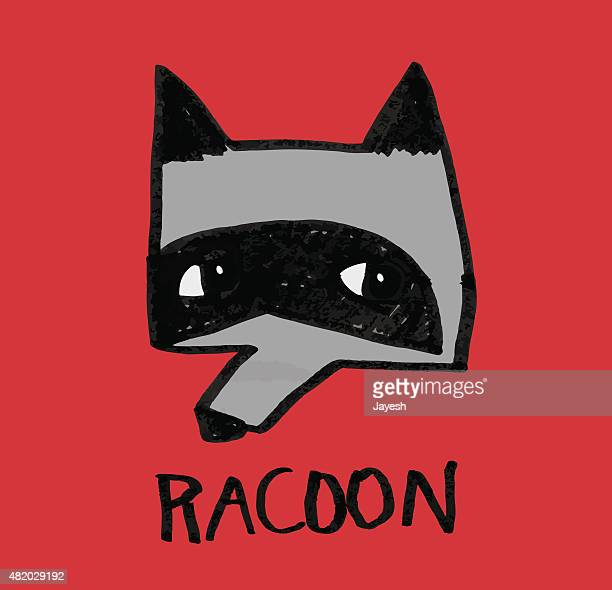 racoon - eccentric stock illustrations