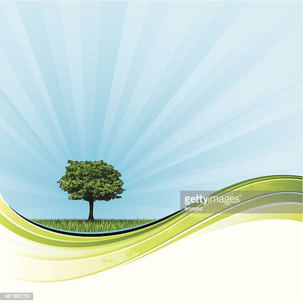 radiant nature background - paddock stock illustrations, clip art, cartoons, & icons