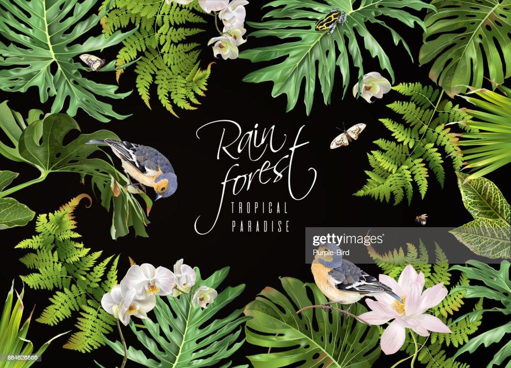 Rain forest bird banner