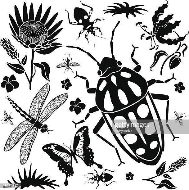 rainbow beetle design elements - assassin bug stock illustrations, clip art, cartoons, & icons