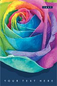 Rainbow rose card dark