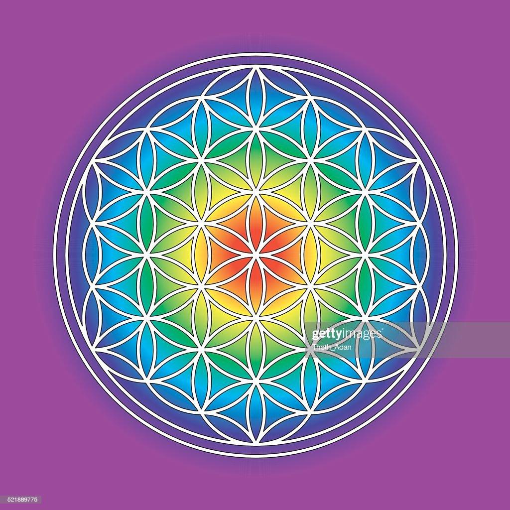 Rainbow-colored flower of life symbol : Stock Illustration