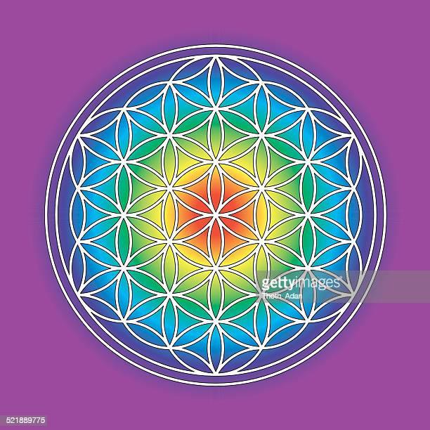 illustrations, cliparts, dessins animés et icônes de arc-en-ciel de couleur symbole de fleur de vie - chakra