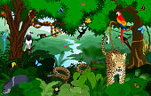 Rainforest with animals vector illustration. Vector Green Tropical Forest jungle with parrots, jaguar, boa, peccary, harpy, monkey, frog, toucan, anaconda and butterflies.
