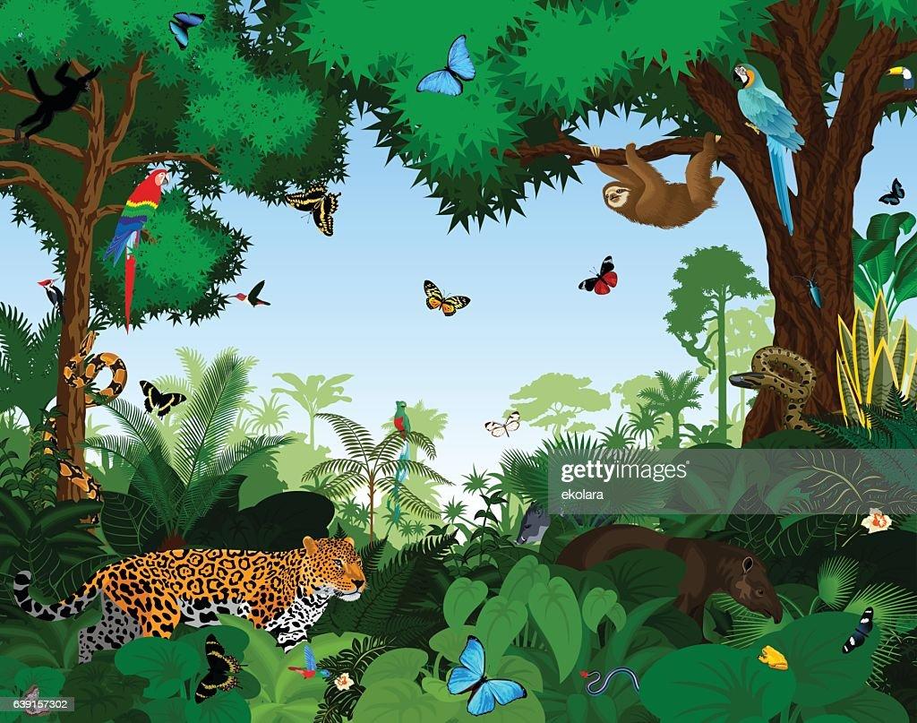 Rainforest with animals vector illustration.