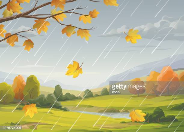 regenreiche herbstlandschaft - bedeckter himmel stock-grafiken, -clipart, -cartoons und -symbole
