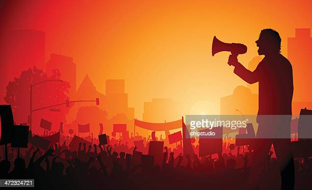 stockillustraties, clipart, cartoons en iconen met rally demonstration - democratie