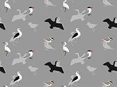 Random African Birds Wallpaper 5