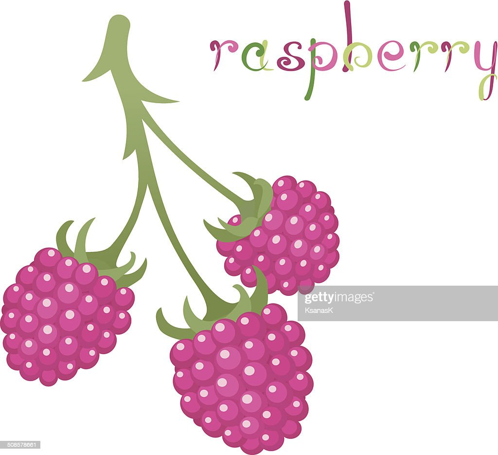 Raspberry Branch : Vectorkunst