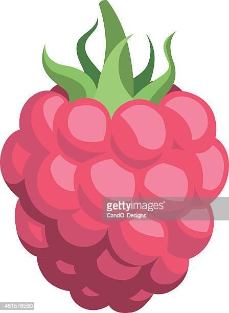 raspberry cartoon - raspberry stock illustrations, clip art, cartoons, & icons