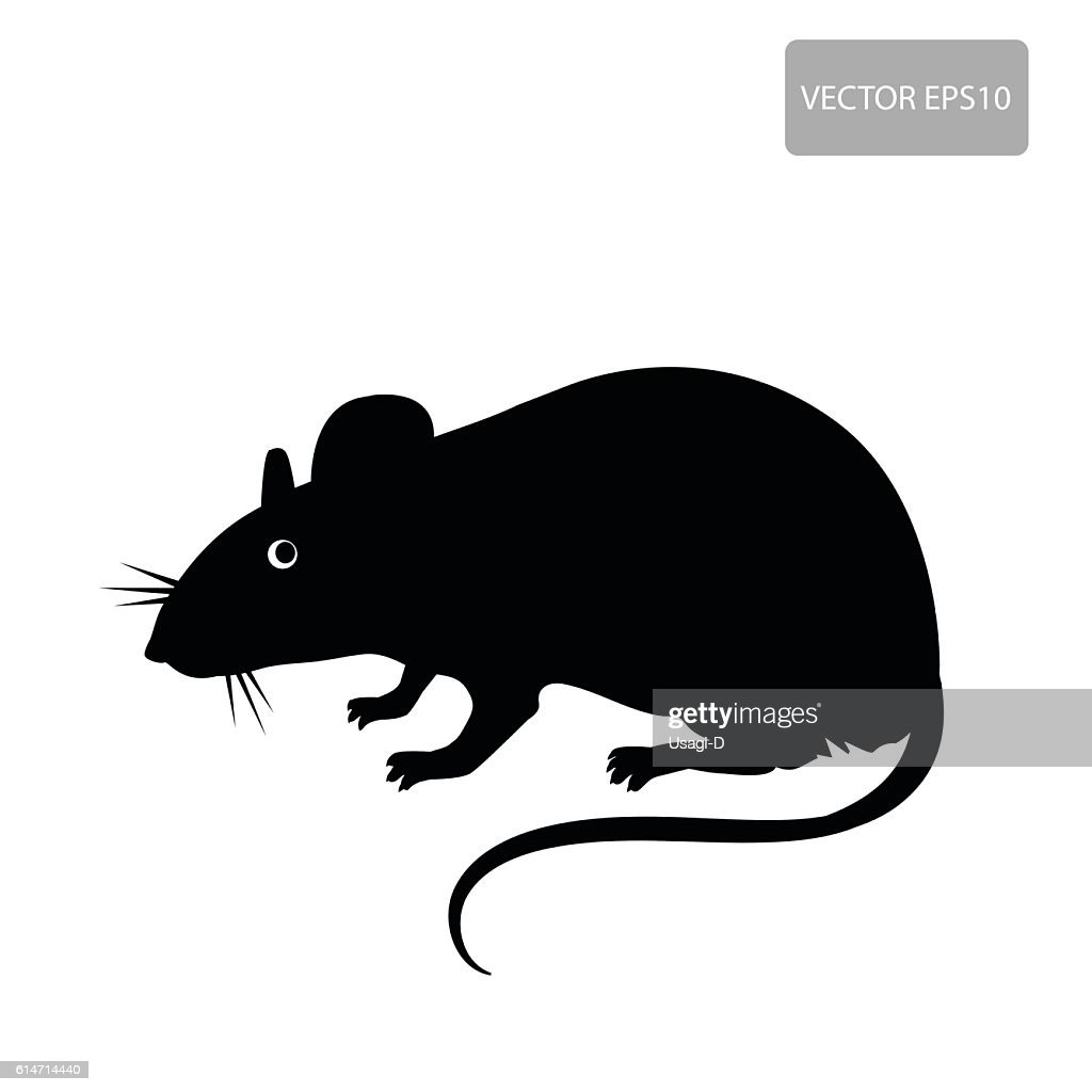 Rat Vector. Rat Silhouette On The White Background.