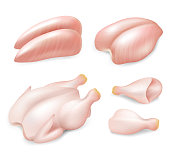 Raw fresh chicken parts for cooking set, vector realistic illustration