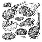 Raw meat vector drawing. Hand drawn beef steak, pork ham, lamb rib, minced chicken forcemeat.