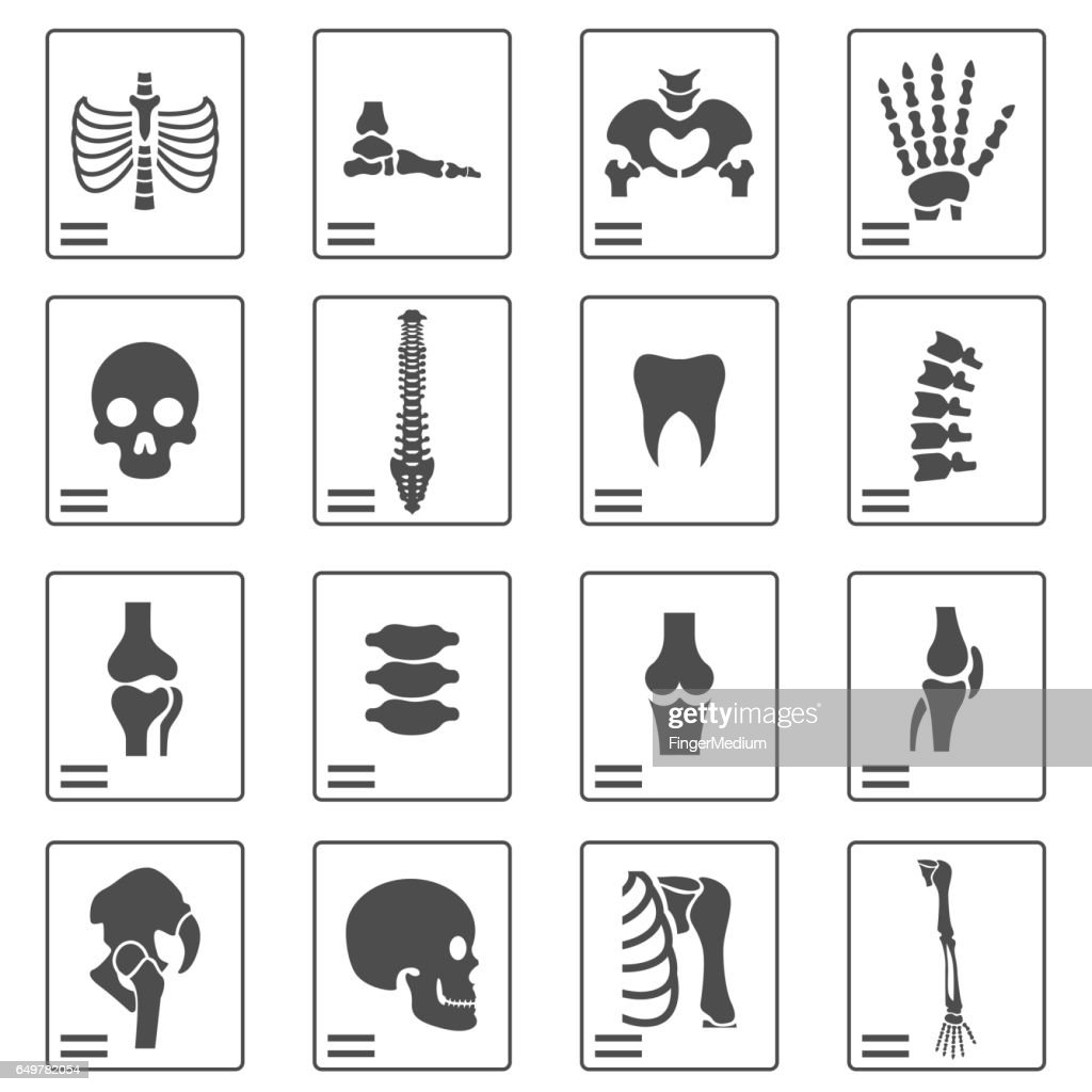 X ray icons : stock illustration