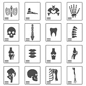 X ray icons