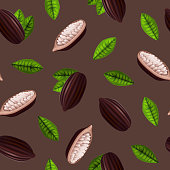 Realistic 3d Cocoa Beans Seamless Pattern Background. Vector
