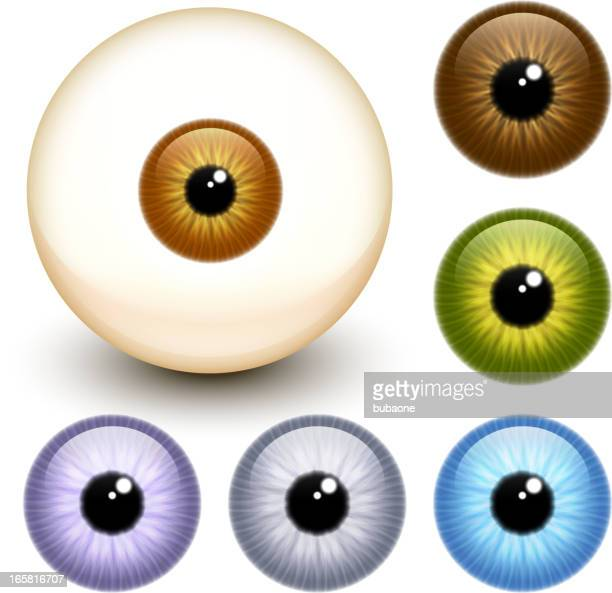 realistic eye eyeball collection - green eyes stock illustrations
