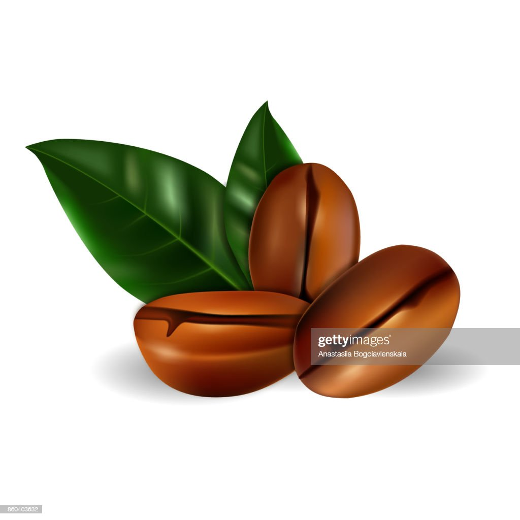 Realistic grains of coffee with green leaves. Vector illusion 3d on a white background.