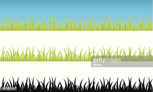 realistic grass continuum - grass stock illustrations, clip art, cartoons, & icons