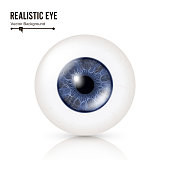 Realistic Human Eyeball. 3d Glossy Photorealistic Eye Detail With Shadow And Reflection. Isolated On White Background. Vector Illustration