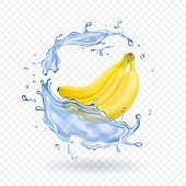 Realistic illustration of bananas isolated with water splash