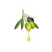 Realistic olive branch 3d illustration for advertising posters, postcards, labels
