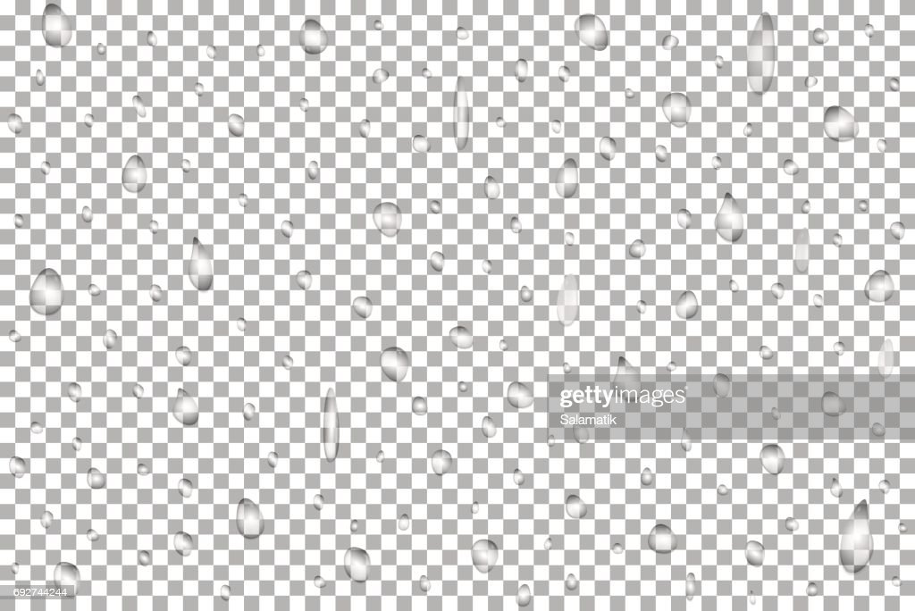 Realistic pure water rain drops isolated on transparent background. Vector clear vapor bubbles on window glass surface for your design
